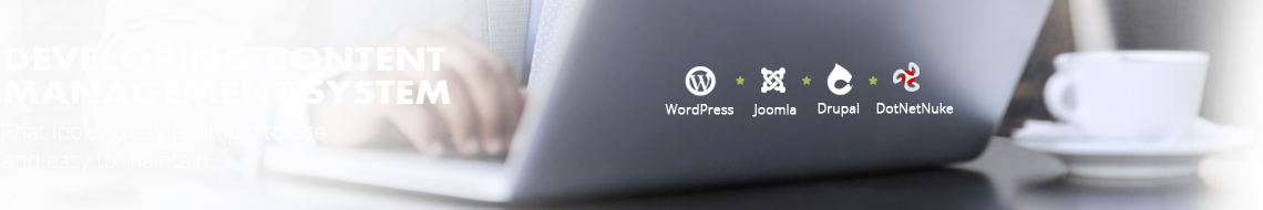 Wordpress CMS Development | Wordpress Development Services | Wordpress Ecommerce Development