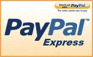 TechnoScore Introduces PayPal Express Plugin for nopCommerce Version 2.6